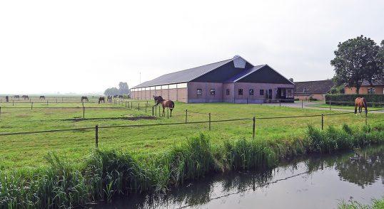 Paardenpension De Groot, Lutterstraat Lithoijen, Noord-Brabant
